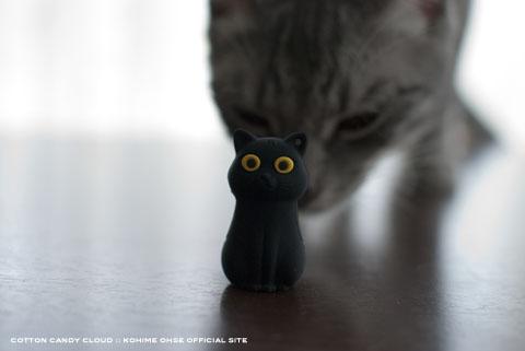 CatDriver_08.jpg