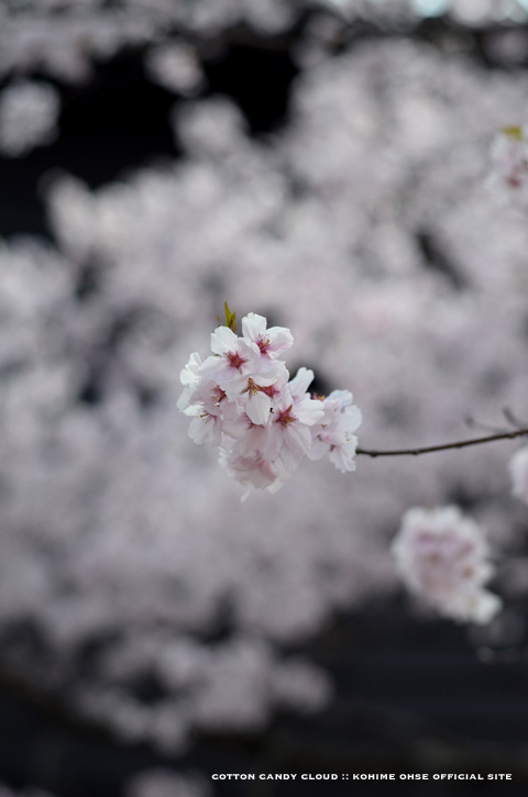 Takatoh_05.jpg