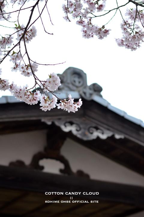 Takatoh_19.jpg