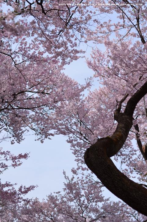 Takatoh_27.jpg