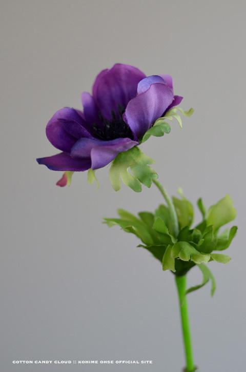 botanical_06.jpg