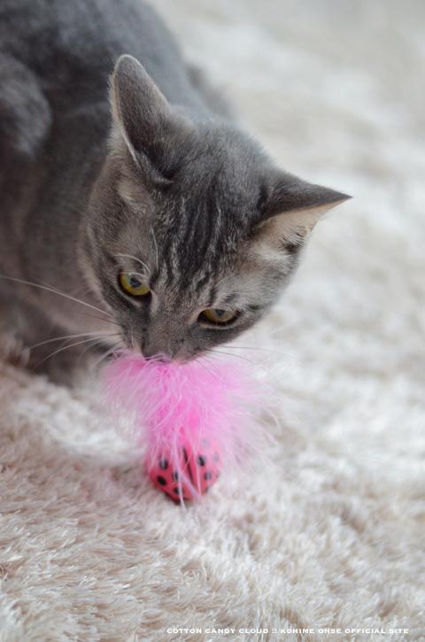 kittyfreak_02.jpg
