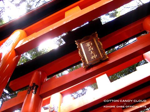 kyoto2010spr_01.jpg