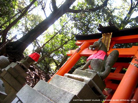 kyoto2010spr_02.jpg