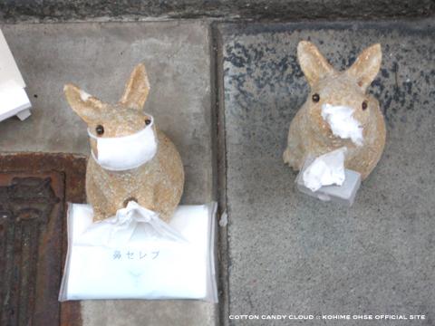 kyoto2010spr_04.jpg