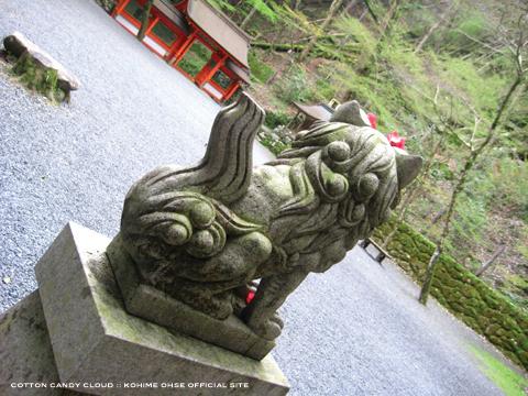 kyoto2010spr_07*.jpg