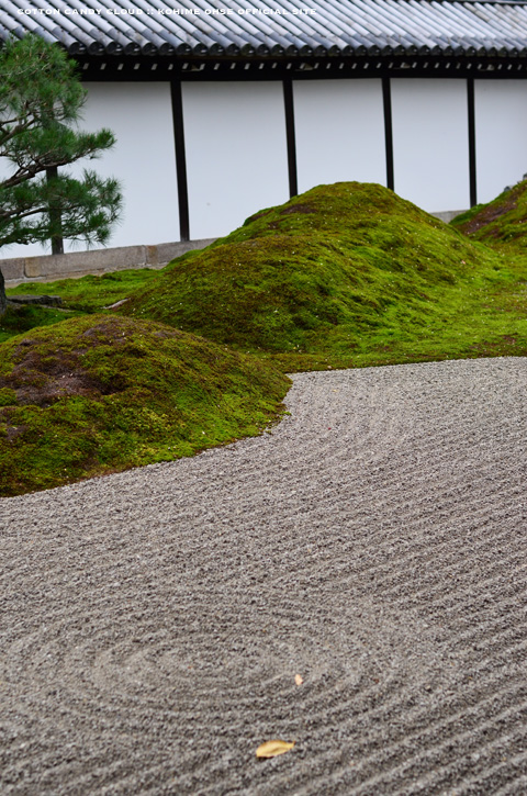kyoto2013_05.jpg