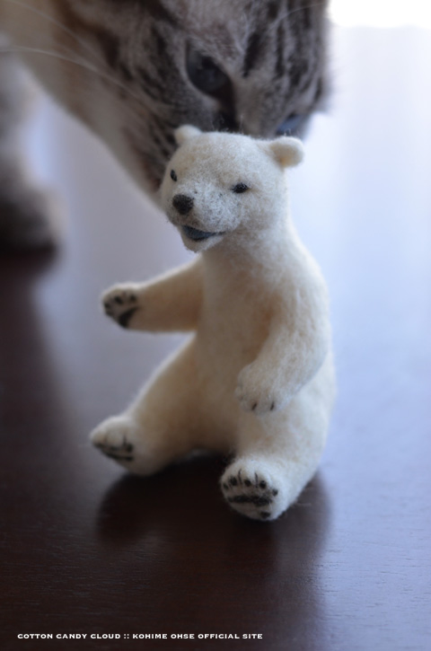 polarbear_03.jpg